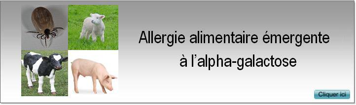 1 alphagal