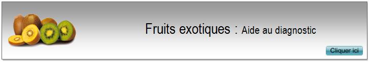 2 Fruits exotiques